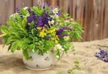 Homeopatia a odchudzanie